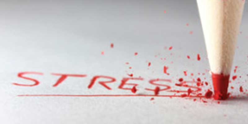 Dude, Stress Less